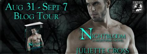 Nightbloom Banner 851 x 315